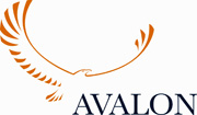 Avalon investment services limited